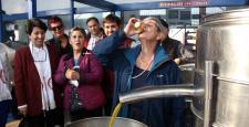 Canan Karatay, yeni sıkılan zeytinyağını bardakla içti