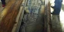 Çin'de bozulmamış 500 yıllık ceset bulundu