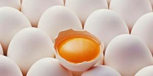 Çürük yumurta kokusu şifa dağıtıyor